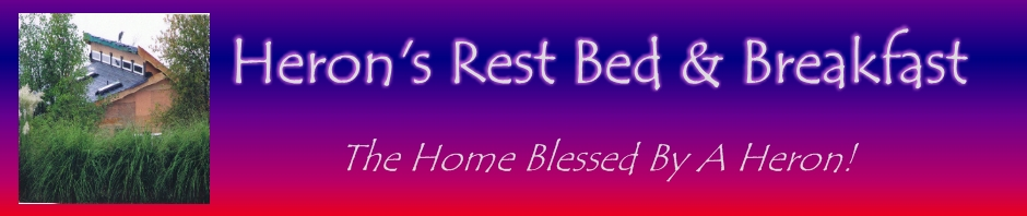 Herons Rest Bed & Breakfast | The Home Blessed By A Heron